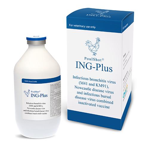 PoulShot ING Plus