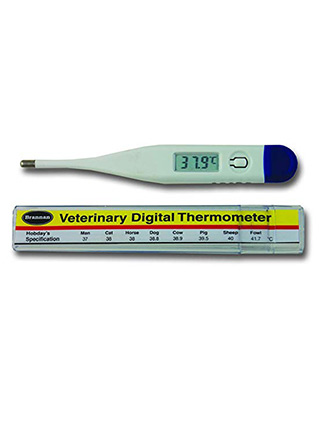 Digital Veterinary Thermometer